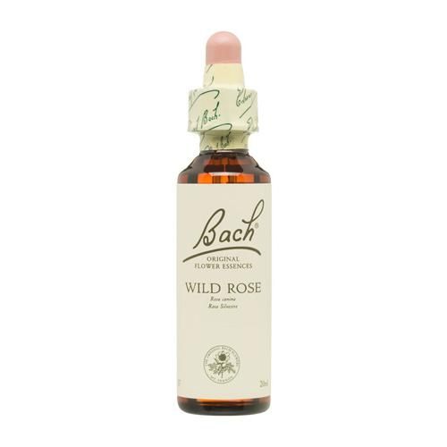 Flores de Bach Wild Rose 20 ml