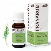 Aceite esencial arbol del te (10 ml)